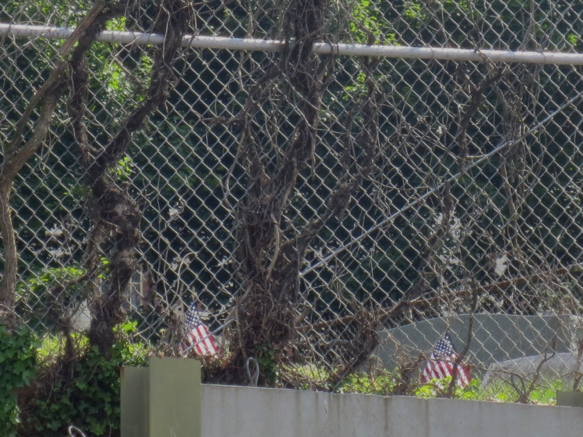 Veterans' tombstones, Towson, Maryland.